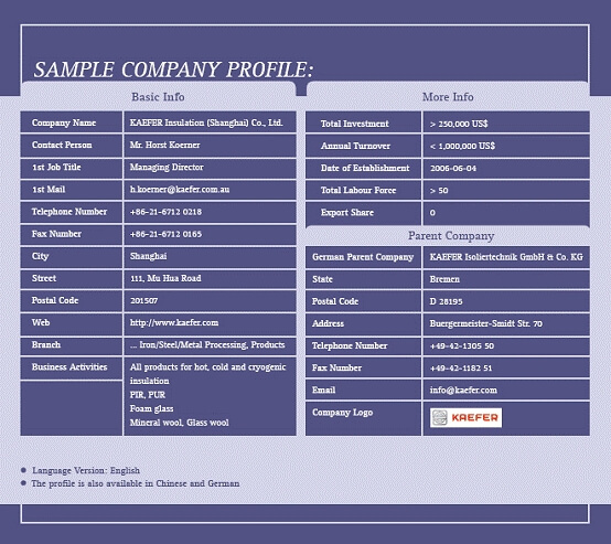 Download A Free Company Profile Template  Formfactory